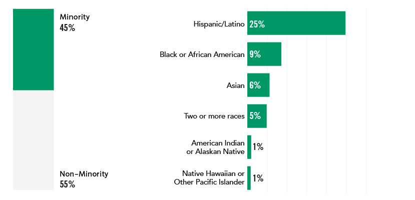 bar chart of 25% Hispanic/Latino, 9% Black or African American, 6% Asian, 5% Two or more races 1% American Indian or Alaskan Native, 1% Native Hawaiian or Other Pacific Islander