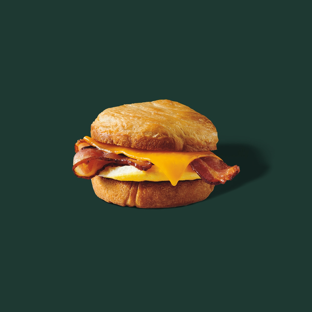 Double-Smoked Bacon, Cheddar & Egg Sandwich: Starbucks