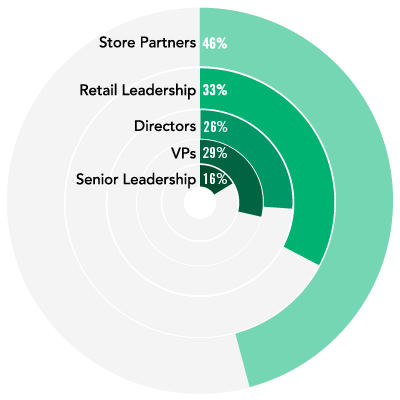 pie chart of 26% Directors, 33% Retail Leadership, 46% Store Partners